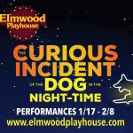 "Elmwood Playhouse Announces Cast and Crew for ""The Curious Incident of the Dog in the Night-Time"""