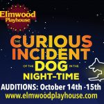 "Auditions for ""The Curious Incident of the Dog in the Night-Time"""